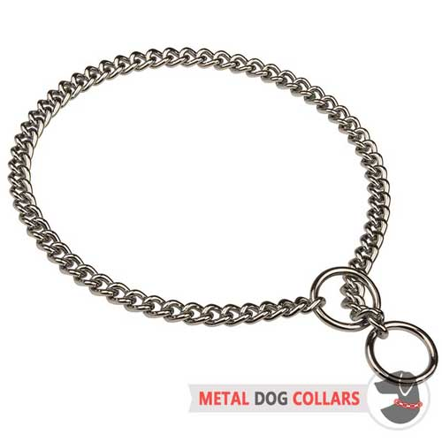 Chrome Plated Choke Dog Collar